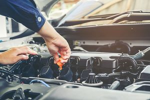 Transmission Services Gresham